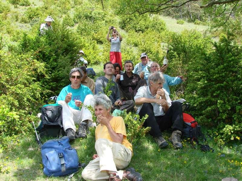 La chasse aux orchidées est ouverte dans la Drôme! Bouf1