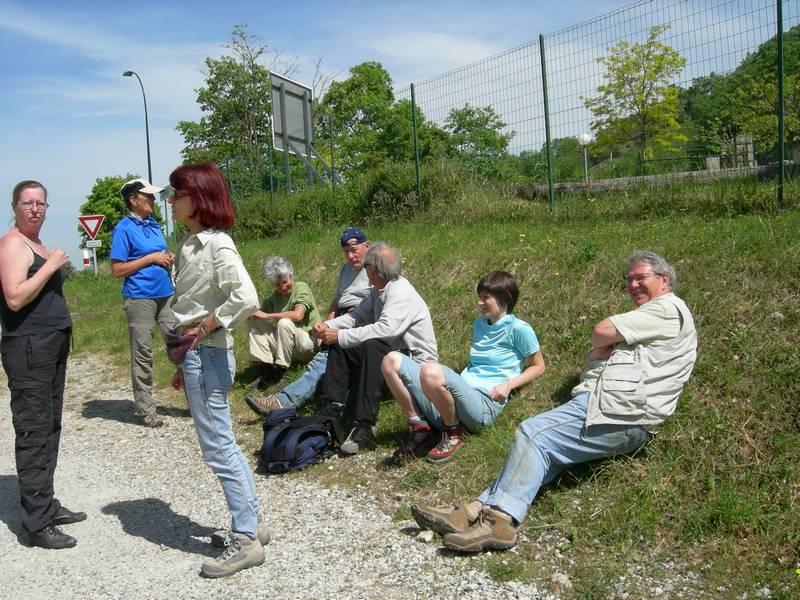 La chasse aux orchidées est ouverte dans la Drôme! Grev