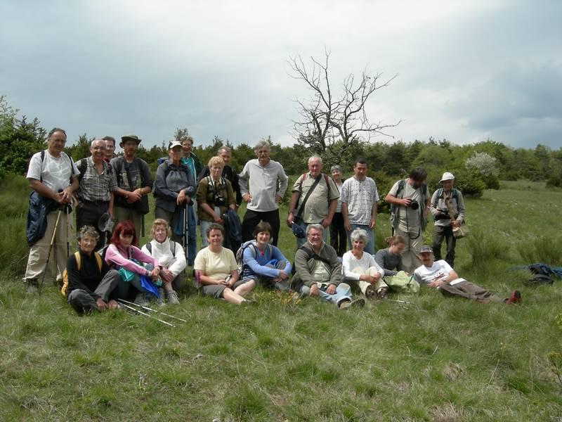 La chasse aux orchidées est ouverte dans la Drôme! Groupe