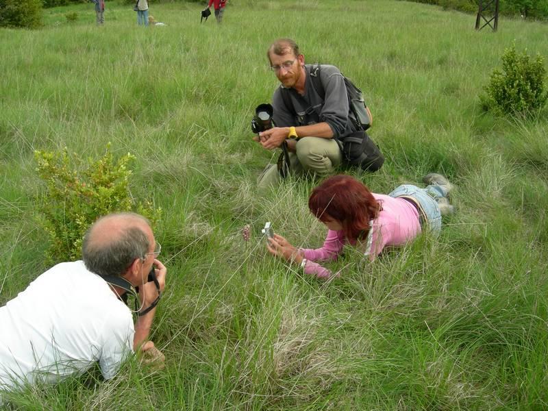 La chasse aux orchidées est ouverte dans la Drôme! Reflectphoto